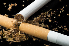 Arranged in a row cigarettes. And scattered tabaco Royalty Free Stock Photo