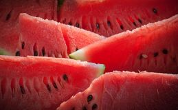 Arranged slices of watermelon Royalty Free Stock Photo