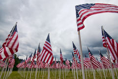 Arrangement of American flags. A patriotic arrangement of american flags representing fallen soldiers with each individual flag Royalty Free Stock Images