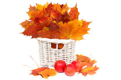 Arrangement of autumn - leaves and apples Royalty Free Stock Photography