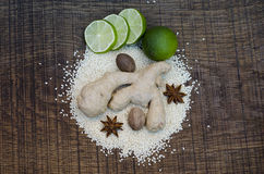 An arrangement of Ayurvedic spice Royalty Free Stock Photography