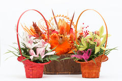 Arrangement of beautiful fresh flowers in wooden basket Stock Photos