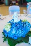 Arrangement blanc bleu de Tableau d'hortensia Photos stock