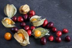 Arrangement of cape gooseberries - physalis with cranberries stock photos