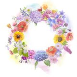 Arrangement of colorful flowers Stock Images