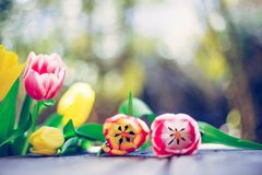 Arrangement of colorful spring flowers in the own garden blurry background with text space ideal for postcard stock photos