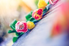Arrangement of colorful spring flowers in the own garden blurry background with text space ideal for postcard royalty free stock image