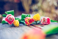 Arrangement of colorful spring flowers in the own garden blurry background with text space ideal for postcard royalty free stock photo