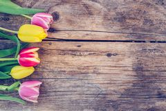 Arrangement of colorful tulips on a rustic wooden table, text space stock photos