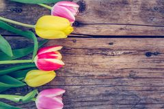 Arrangement of colorful tulips on a rustic wooden table, text space stock image
