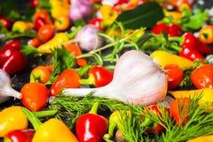 Arrangement d'ail, jaune, poivrons de piment d'un rouge ardent, sel de mer, diff Photographie stock libre de droits