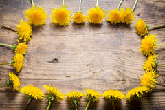 Arrangement of dandelions as frame on wooden table Royalty Free Stock Photography
