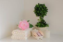 Arrangement de Bath dans les couleurs blanches et roses Serviette, huile d'arome, fleurs, savon Foyer sélectif, horizontal Photos stock