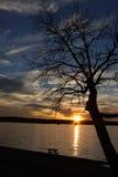 Arrangement de parc de lac Images libres de droits