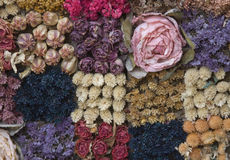 Arrangement of Dried Flowers Stock Image