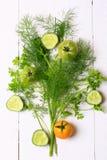 Arrangement fennel coriander tomato cucumber Royalty Free Stock Photography