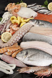 Arrangement of fish and seafood. On black background Royalty Free Stock Images