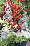 Arrangement floral de Noël Photographie stock libre de droits