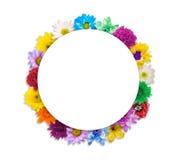Arrangement flower frame isolated on white Stock Photos