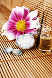 Arrangement with flower, sea salt and oils Royalty Free Stock Images