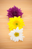 Arrangement flower on wood background Stock Photos