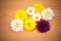 Arrangement flower on wood background Royalty Free Stock Photo