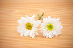 Arrangement flower on wooden with empty space Royalty Free Stock Photography