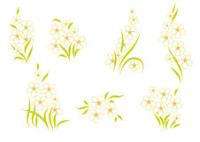 Arrangement of flowers. Tracks from the delicate white flowers and leaves Royalty Free Stock Image