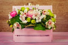 Arrangement with flowers. In a pink wooden box Royalty Free Stock Images