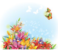 Arrangement of flowers. And butterflies Royalty Free Stock Image