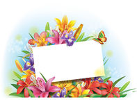 Arrangement of flowers with empty  card for text Royalty Free Stock Images