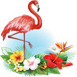 Arrangement from flowers and Flamingo Stock Photos