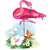 Arrangement from  flowers and Flamingo Royalty Free Stock Photography