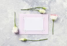 An arrangement of flowers and paper cards on gray background Stock Photography