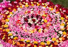 Arrangement of flowers and petals from the center and forming a larger circle. A decorative arrangement of flowers and petals from the center and forming a stock photo