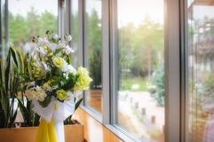Arrangement of flowers in the window Royalty Free Stock Image