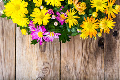 Arrangement of fresh flowers in a pot Royalty Free Stock Image