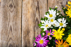 Arrangement of fresh flowers in a pot Royalty Free Stock Photos
