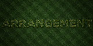 ARRANGEMENT - fresh Grass letters with flowers and dandelions - 3D rendered royalty free stock image. Can be used for online banner ads and direct mailers Stock Photos