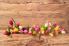 Arrangement of fresh spring flowers for Easter. Arrangement of colorful fresh spring flowers with tulips and daffodils for Easter over a textured wood background Royalty Free Stock Images