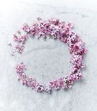 An arrangement of lilac flowers on gray marble background. Top view. Horizontal Royalty Free Stock Photos