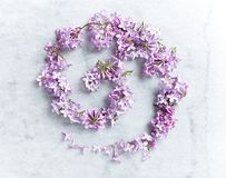 An arrangement of lilac flowers on gray marble background. Top view. Horizontal Stock Photography