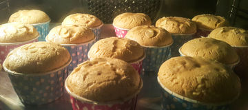 Arrangement of mini cup cakes. Stock Image