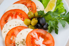 Arrangement of mozzarella and tomatoes. Royalty Free Stock Photography