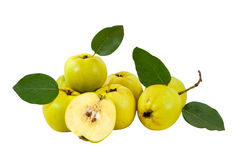 Free Arrangement Of Fresh Quinces Royalty Free Stock Images - 11431839