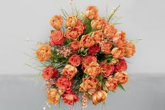 Orange tulips, roses, broom in spring flowers bouquet Royalty Free Stock Photo