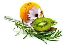Orange, daisy and kiwifruit Stock Photos