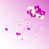 Arrangement of orchid flowers and pearls Royalty Free Stock Images