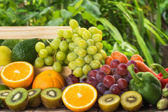 Arrangement prepared ripe fruits and vegetables Royalty Free Stock Photography