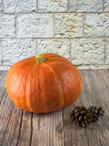 Arrangement of pumkin and fir cones on wooden ground Royalty Free Stock Photography